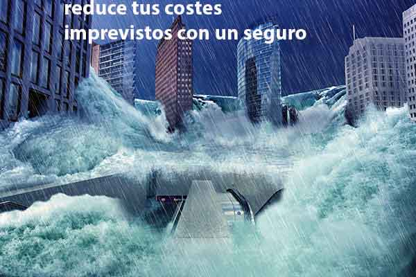 seguros para reducir costes