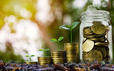 Cómo invertir en Fondos de ahorro
