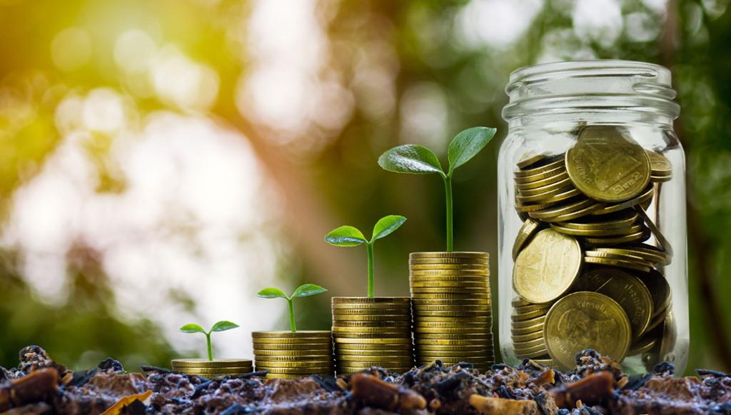 fondos de ahorro e inversión